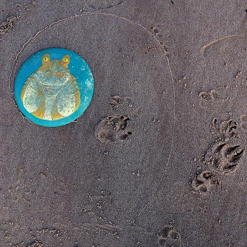 Jar Jar Saucer in sand